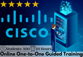 Cisco 350-401 One-to-One Online Training
